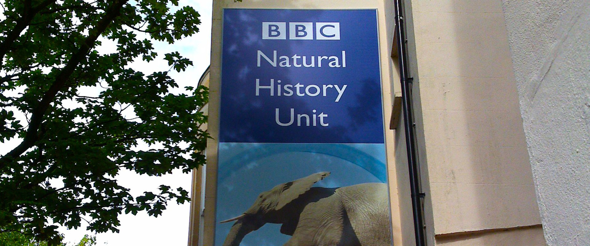 BBC Natural History Unit external signage branding